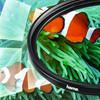 visual leverancier Hama Circulair Polarisatiefilter 52mm