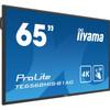 linkerkant ProLite TE6568MIS-B1AG