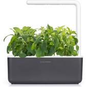 Click & Grow Smart Garden 3 - Gris anthracite