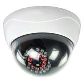 Dummy IP-camera's