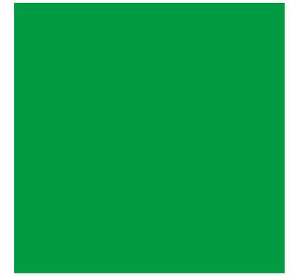 Bresser BR-9 Achtergronddoek 4x6m Groen