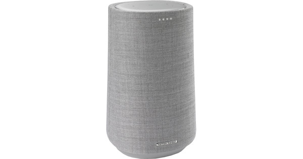 Harman Kardon Citation 100 Gray