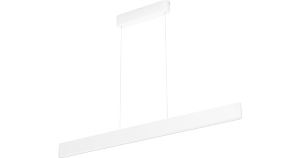 Philips Hue Ensis Hanging Lamp White & Color White
