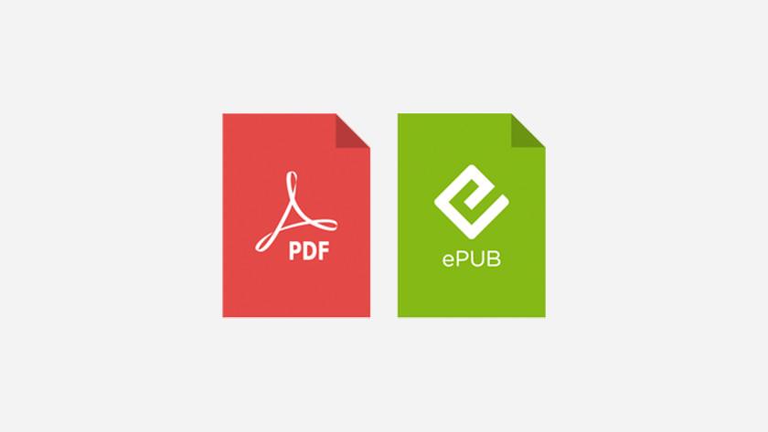 PDF ePUB