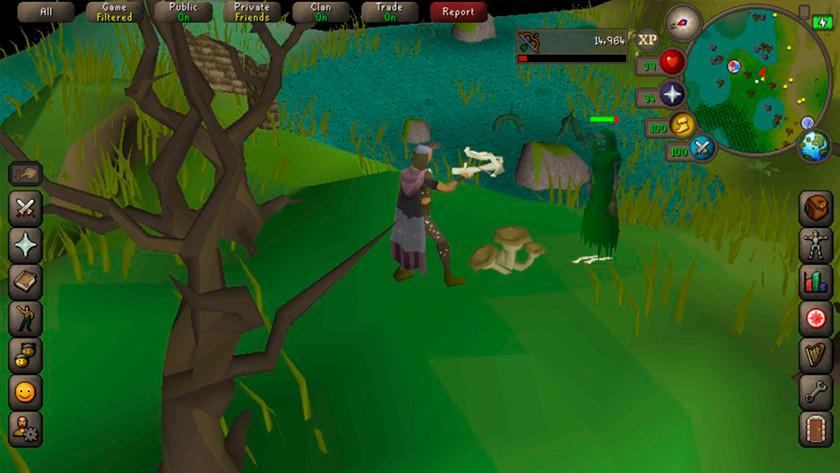 Runescape updates