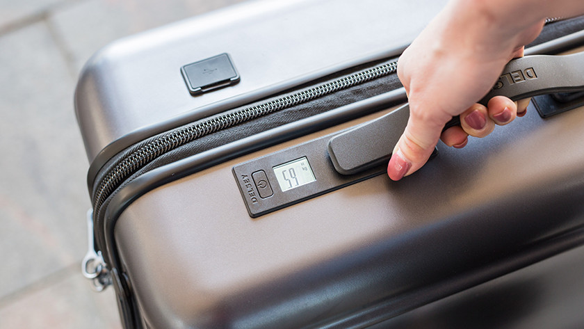 Luggage fees