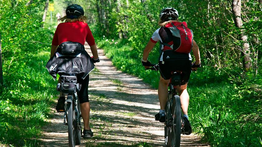 Cyclistes réguliers