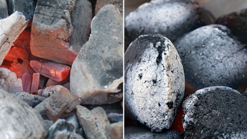 Charbon ou briquettes