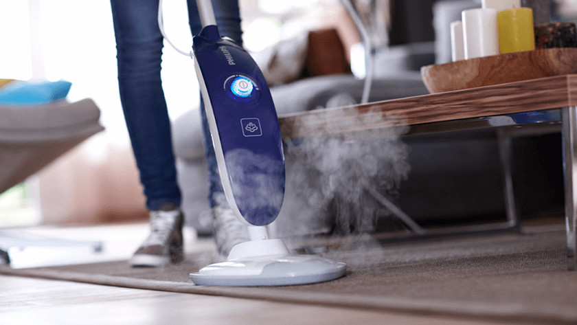 Carpet and rug steam cleaner