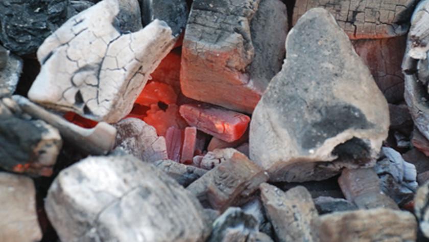 De nadelen van houtskool