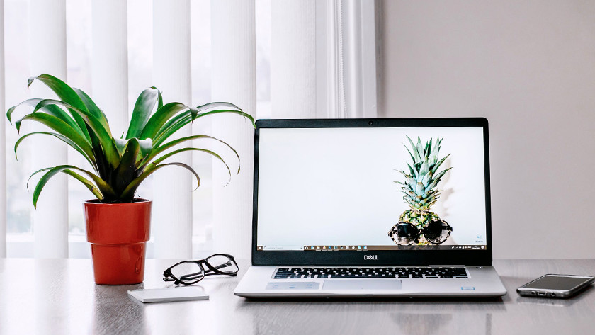 Laptop on desk with plant and various accessories.
