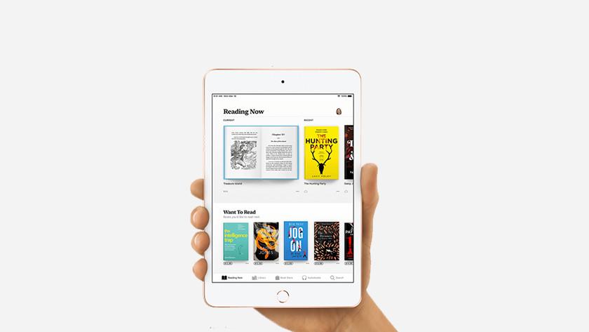 iPad Mini 5 formaat
