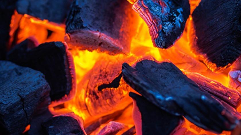 De voordelen van houtskool