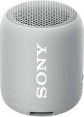 Sony SRS-XB12 Gris