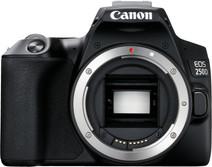 Canon Boîtier EOS 250D