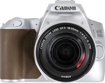 Canon EOS 250 D Argent + 18-55 mm f/4.56 IS STM