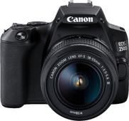 Canon EOS 250D Noir + 18-55 mm f/3.5-5.6 DC III + Sacoche + carte mémoire de 16 Go + chiff