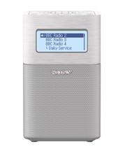 Sony XDR-V1BTD Wit