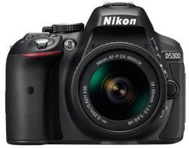 Nikon D5300 + AF-P DX 18-55mm F/3.5-5.6G VR