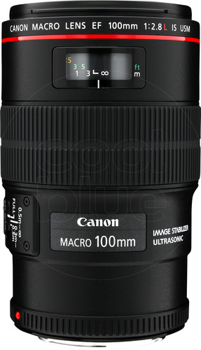 Canon EF 100mm f/2.8L Macro IS USM Main Image