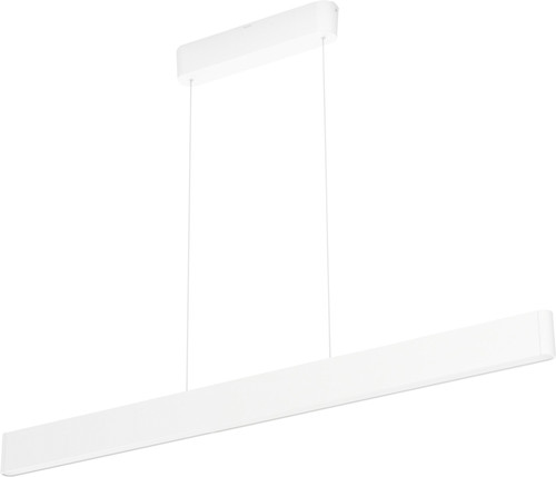 Philips Hue Ensis Hanglamp White & Colour Wit Main Image