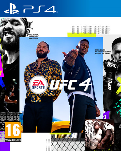 UFC 4 (PS4) Main Image