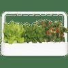 Click & Grow Smart Garden 9 - Blanc