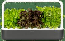 Click & Grow Smart Garden 9 - Dark Grey