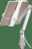 Neomounts by NewStar D100 Support de Bureau pour Tablette Universel Argent
