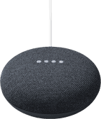 Google Nest Mini Gray