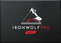 Seagate IronWolf 125  Pro 3840 GB