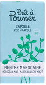 Pret a Pousser Indoor Garden Navulling Moroccan Mint