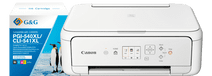 Canon PIXMA TS5151 + Huismerk Inkt Canon PIXMA Printers